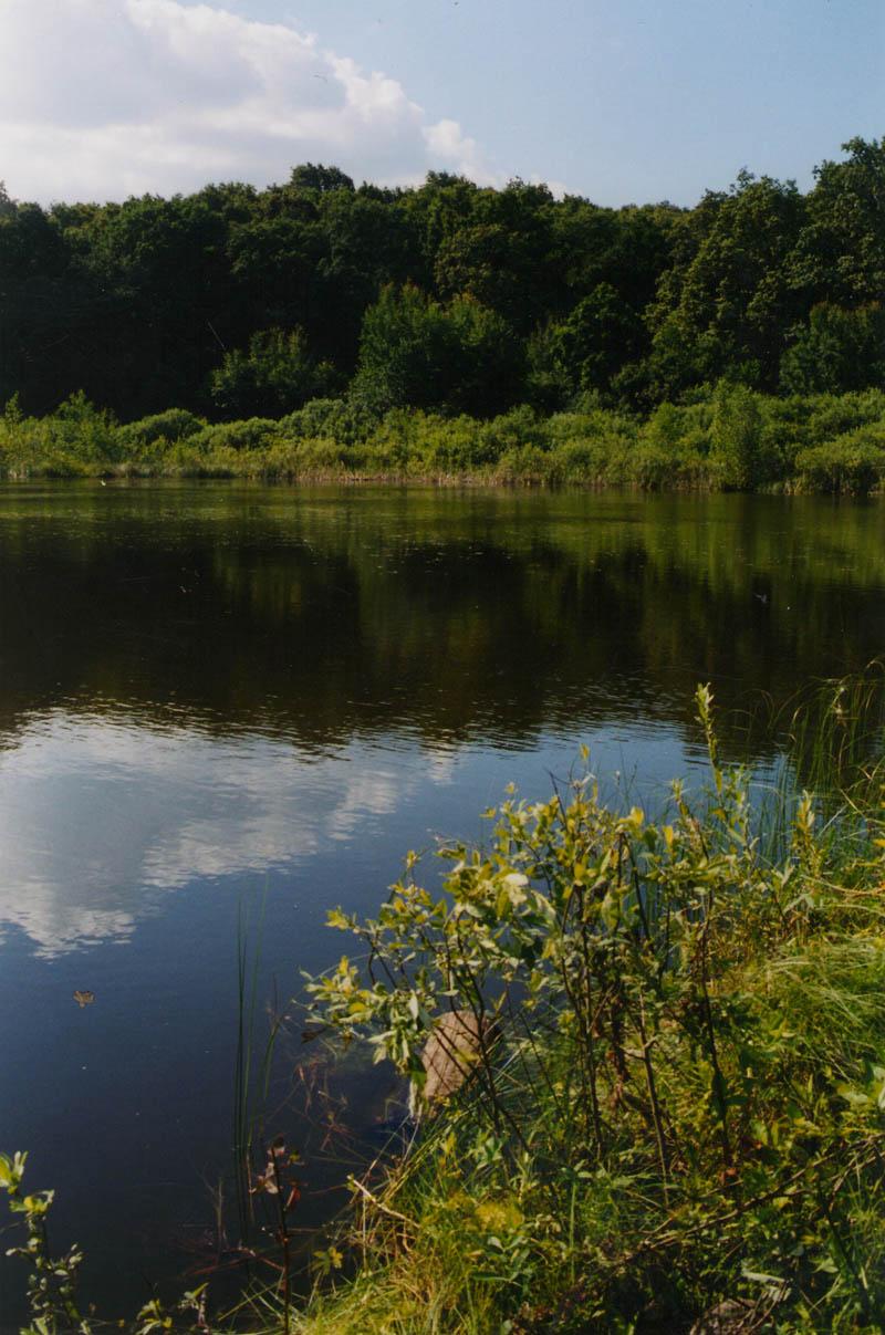 Рыбалка на озере маховое
